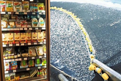écologie supermarchés