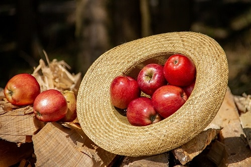 pommes vertu santé